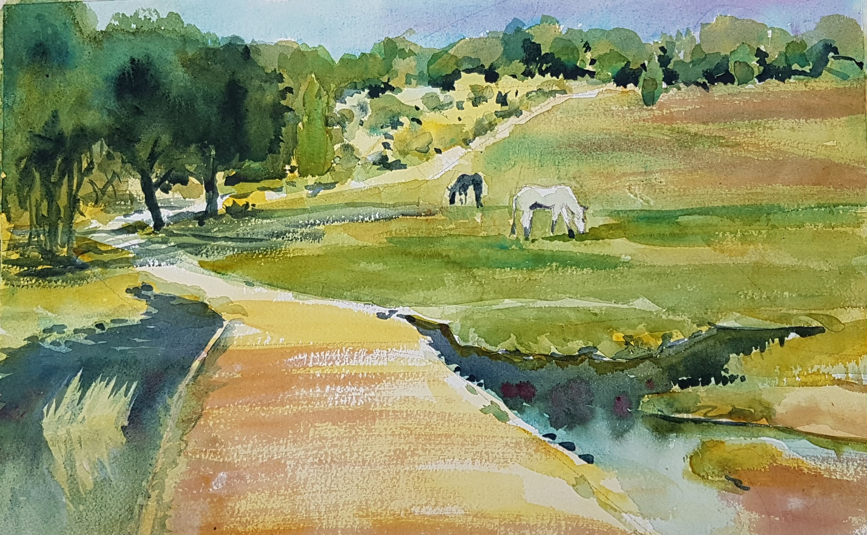 Kirstin White - As the Cuckoo Called - New Forest